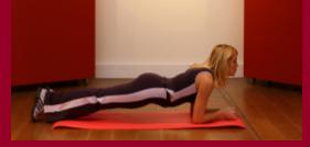 exercice planche pour transverse