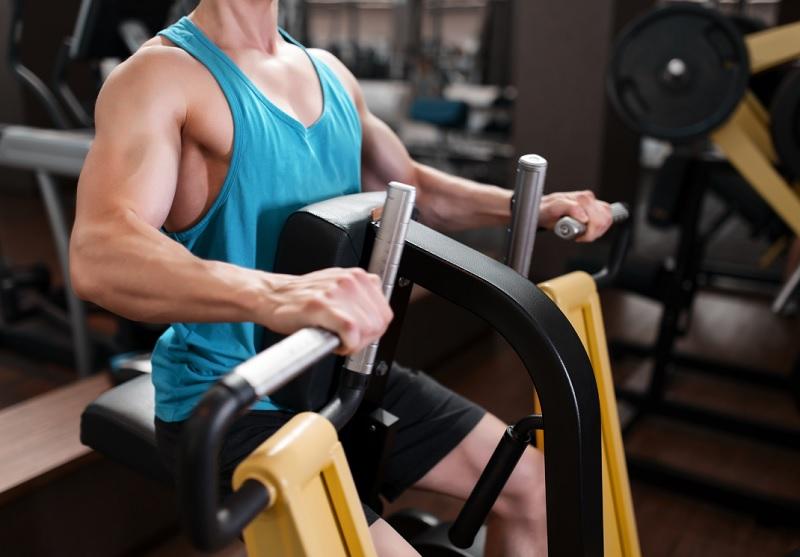 La première année de musculation